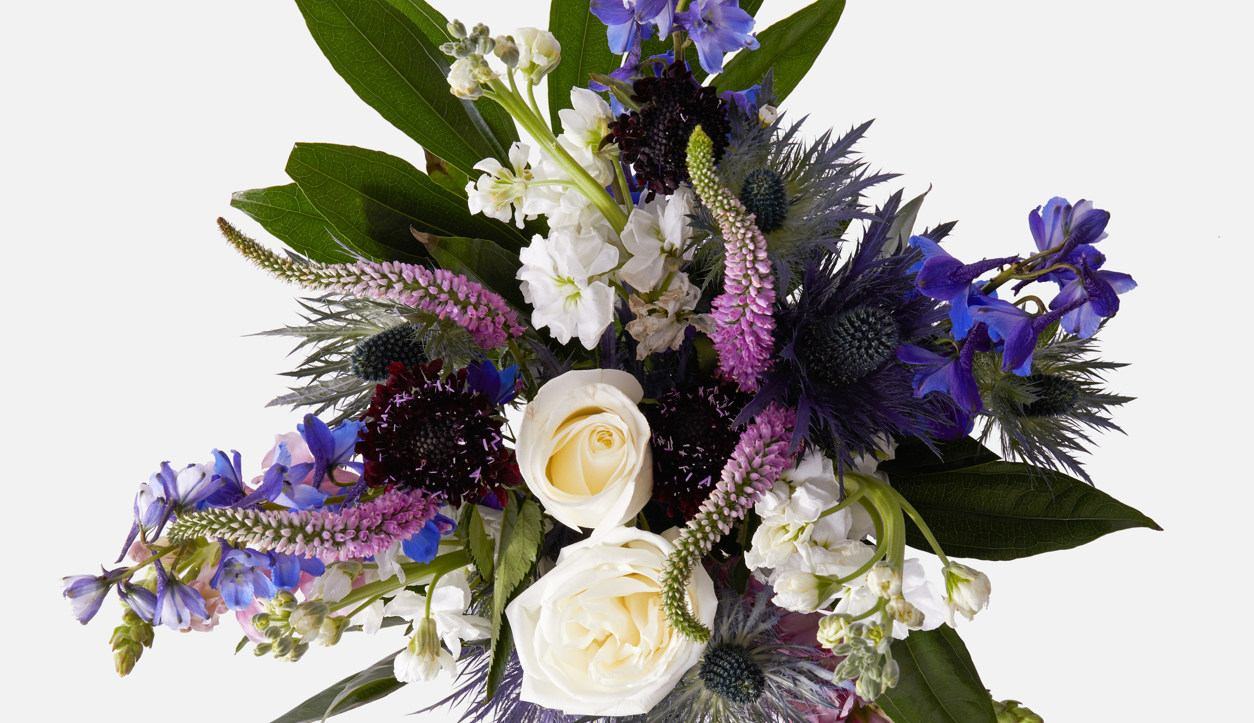 Flower bouquet of white roses and other purple and blue flowers.