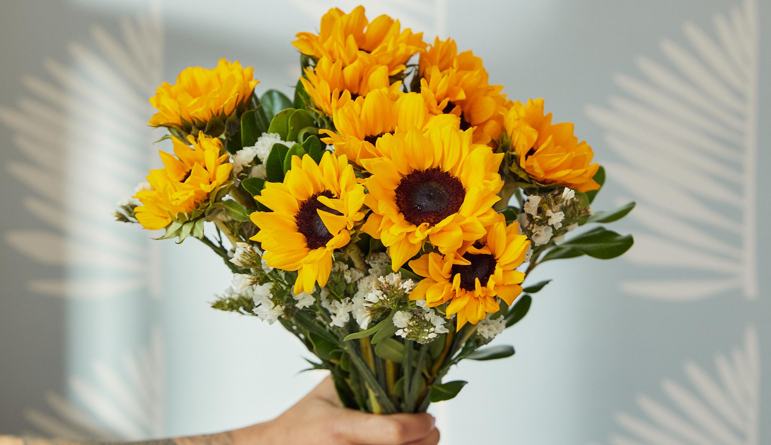 Hand holding sunflower bouquet