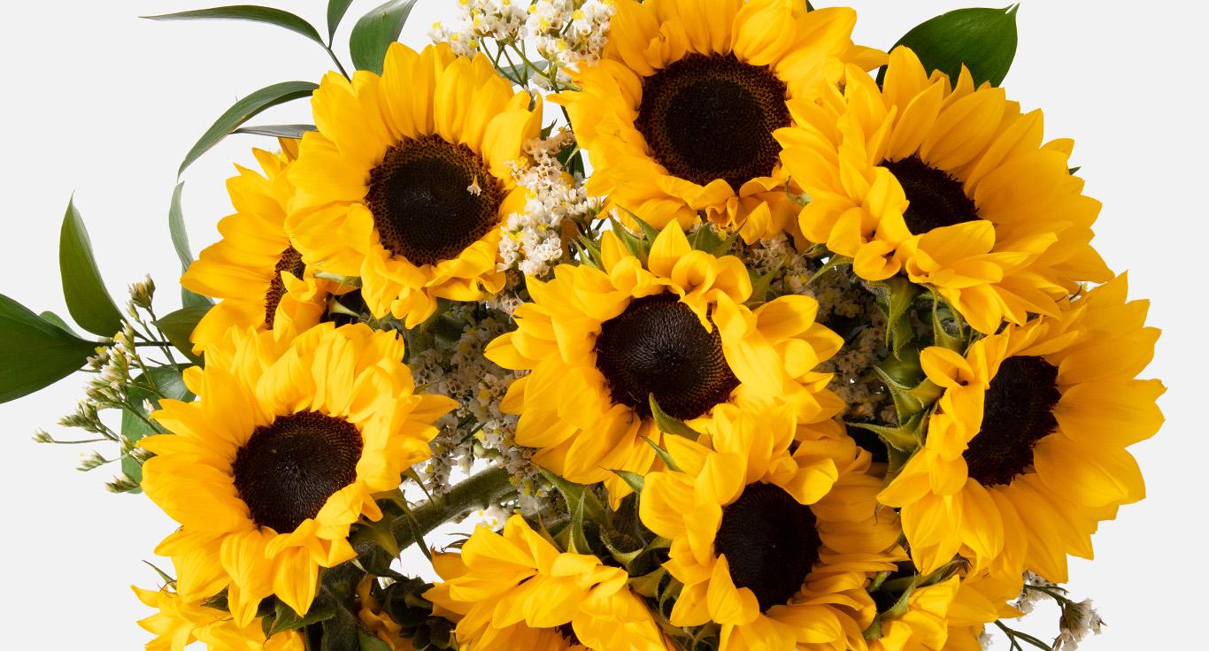 Easter sunflowers