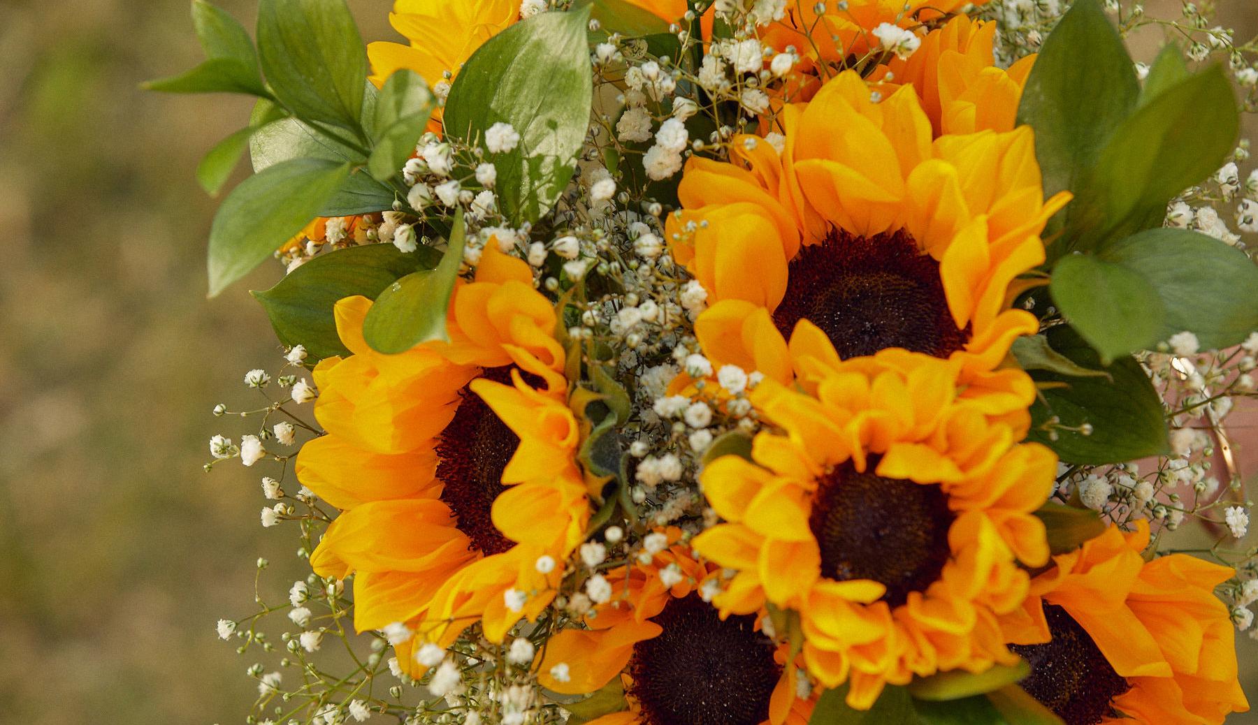 Close up of sunflower floral bouquet