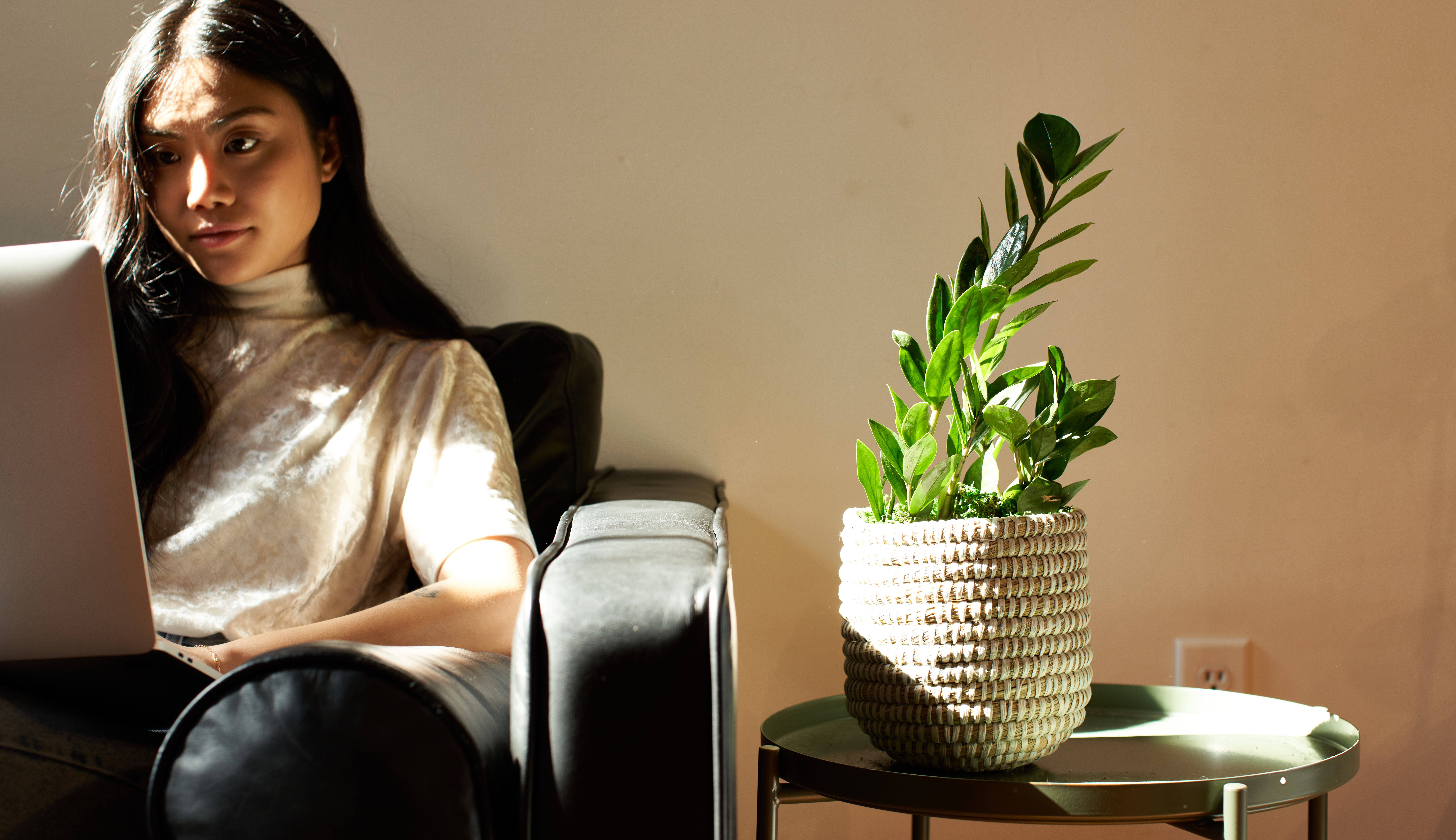 Woman typing on laptop at chair next to a table with a ZZ plant.