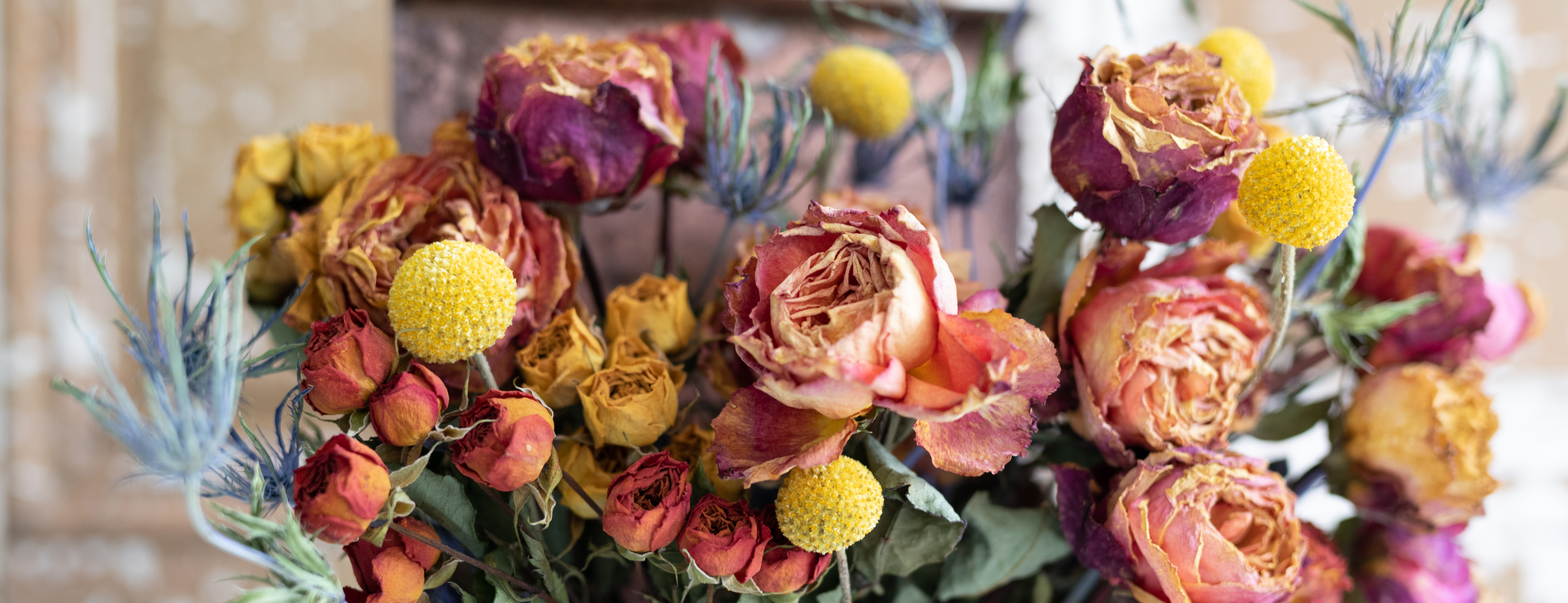 Arrangement of colorful dried flowers
