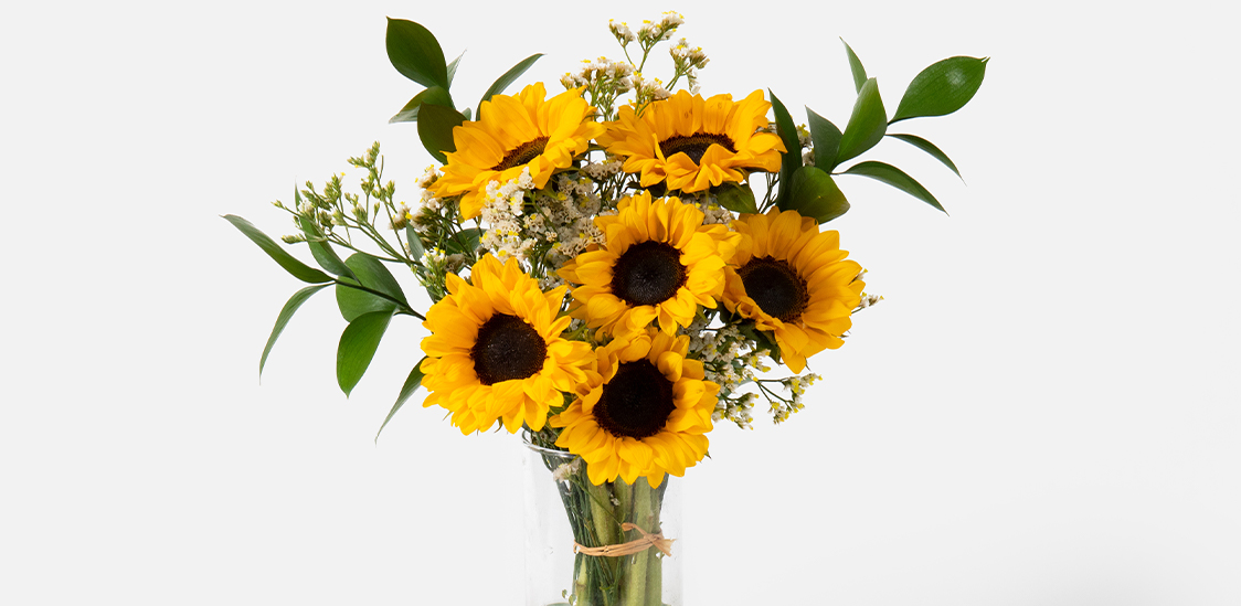Sunflowers for birthday