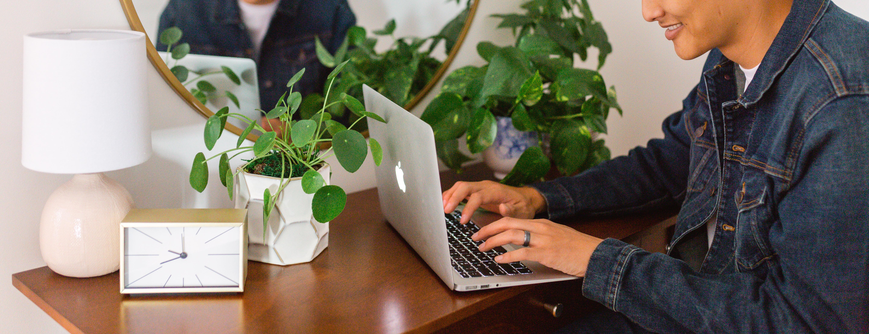 Selection of desk plants including a pilea plant and pothos plant.