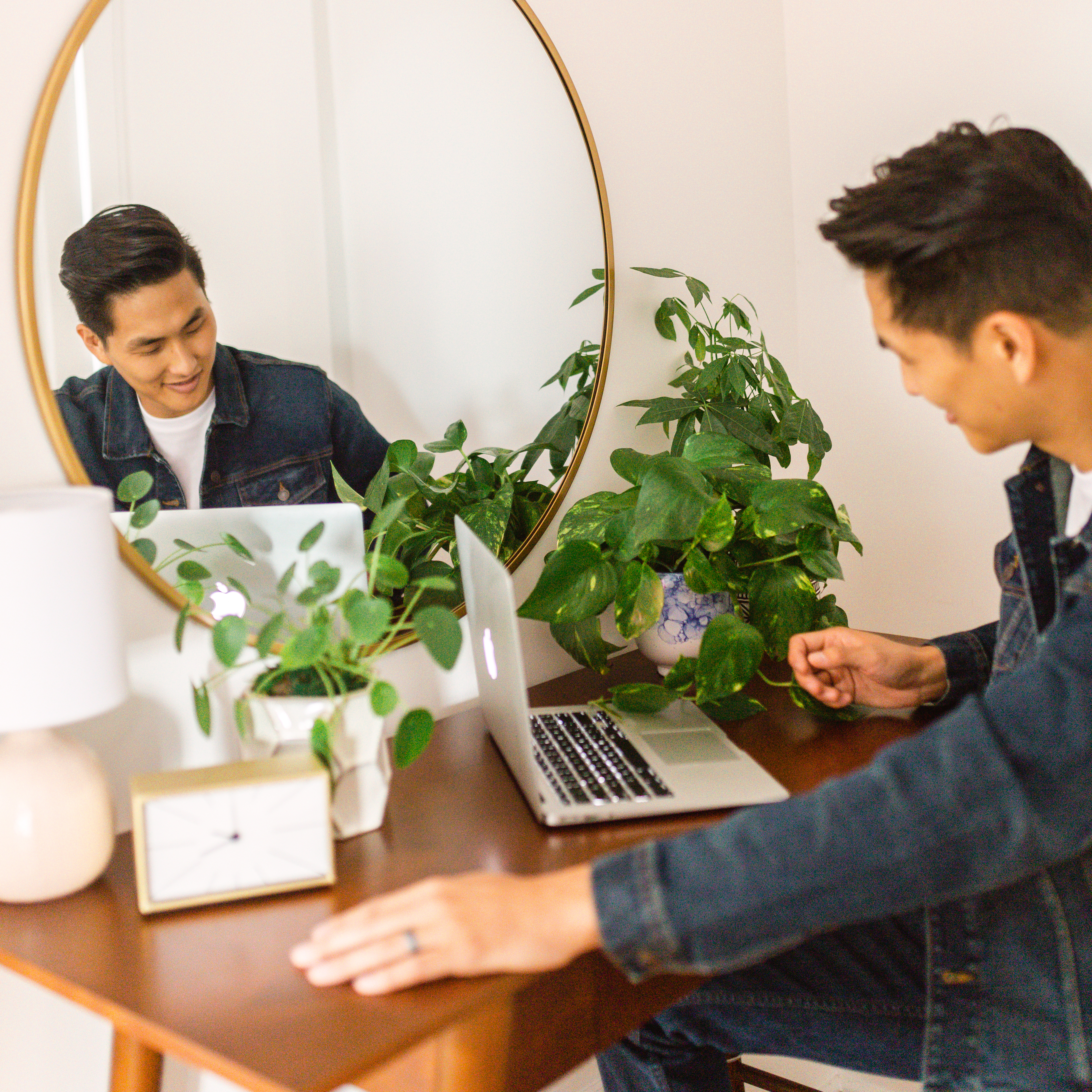 best-office-desk-plants